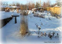 calgary garden coach - fav plants
