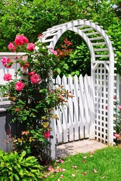 white picket fence with arbour