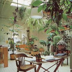 Rolla's Loves   White floorboards and indoor jungles by rollasjeans