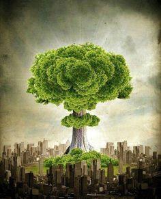 Mother earth ir (Facebook)