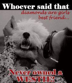 Best Friend...so true!  My little buddy is right next to me !!!