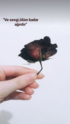 And love is as heavy as death.🍂 And love is as heavy as death🍂 The post And love is as heavy as death🍂 appeared first on Woman Casual - Life Quotes Sad Words, Love Words, Beautiful Words, Time Quotes, Book Quotes, Words Quotes, Separation Quotes, Valentine Love, Science Quotes