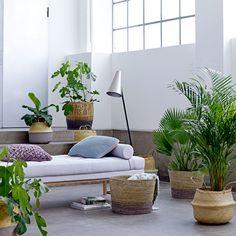 Viste Tu Casa De Estilo Tropical Chic Con Olhom Incluye Promo Y Sorteo Style Tropical, Deco Jungle, Decoracion Vintage Chic, Deco Boheme, Indoor Planters, Plants Indoor, Outdoor Furniture Sets, Outdoor Decor, Home And Deco