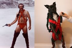 Sean Connery from the weird 1974 science fiction movie Zardoz. Dave Shumka dressed his dog Grampa to match Animal Halloween Costumes, Halloween Photos, Pet Costumes, Halloween Cosplay, Costume Ideas, Halloween Crafts, Hipster Dog, Chia Pet, Animal Tumblr