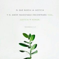 Proverbs Whoever pursues justice and kindness will find life and honor. Bible Verses Quotes, Jesus Quotes, Bible Scriptures, Scripture Verses, Christian Life, Christian Quotes, Christian Church, Daily Bible, Daily Word