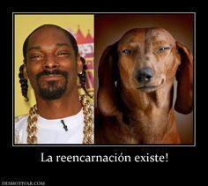 La+reencarnación+existe!