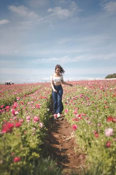 Carlsbad Flower Fields, Mountains, Tips, Nature, Flowers, Photography, Travel, Ideas, Naturaleza