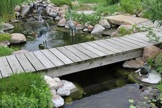 A rustic bridge leads straight from the back porch door, over the water garden, and out to the patio for pondside dining and entertainment. Steep Backyard, Backyard Water Feature, Ponds Backyard, Backyard Landscaping, Backyard Waterfalls, Garden Ponds, Koi Ponds, Landscaping Ideas, Garden Stream