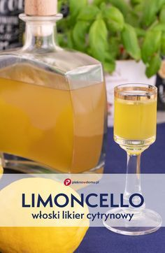 Cocktail Drinks, Alcoholic Drinks, Cocktails, Kitchen Magic, Irish Cream, Limoncello, Triple Sec, Food Inspiration, Italian Recipes