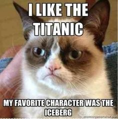 I like the Titanic funny memes jokes meme lol funny quotes comedy humor lmao… Ich mag die Titanic lustige Meme Witze Meme lol lustige Zitate Komödie Humor Grumpy Cat Quotes, Funny Grumpy Cat Memes, Crazy Funny Memes, Cute Memes, Really Funny Memes, Funny Relatable Memes, Haha Funny, Grumpy Cat Images, Funny Memes For Kids