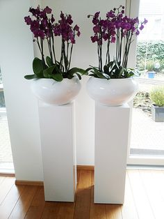 Säule mit Pflanze – Orchideen Dekoration – Pillar with plant – orchids decoration – Orchid Arrangements, House Plants Decor, Patio Plants, Office Plants, Bedroom Plants, Interior Plants, Interior Design, Indoor Planters, Container Plants