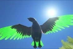 Rainbow argie ark pinterest green tipped argentavis malvernweather Images