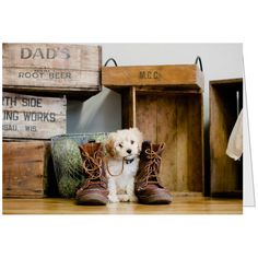 Cavapoo and Boots  All occasion greeting card by ShoeDogGreetings