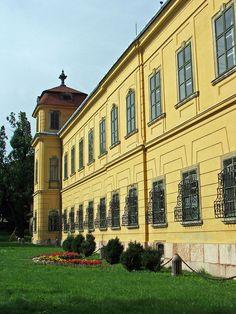 Esterhazy palace in Tata, Hungary Beautiful Castles, Central Europe, Ancient Architecture, Slovenia, Palaces, Czech Republic, Hungary, Budapest, Croatia