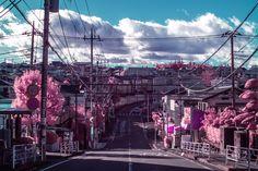 Neon Aesthetic, Japanese Aesthetic, Cyberpunk Anime, Neon Noir, Art Station, Anime Japan, Wallpaper Pc, Skull Art, Stay Tuned
