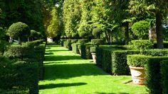 Garden Design In French Style - The Basic Rules! Landscape Design, Garden Design, French Chateau, Plantation, Back Gardens, Front Yard Landscaping, Hedges, Stepping Stones, Exterior