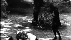 pine box boys STAB - YouTube holy crap my new fav bloodgrass song......hell yeah