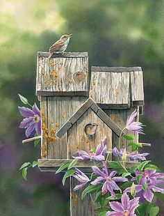 """Dream House - House Wrens"" by Susan Bourdet"