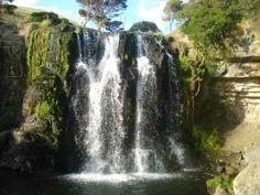 Waitakere Waterfalls, Nth Island, NZ. How many? Here's 20: Toroanui, Okiritoto, Taiapa, Mokoroa, Houheria, Wainamu, Cascades, Waitakere, Marawhara, Kitekite, Karekare, Pararaha, Cowans, Nihotupu, Karamatura, Fairy Falls, White Stream, Seagull Stream, Whatipu Stream and the Esk Stream.