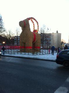 Gavle Natale 2014