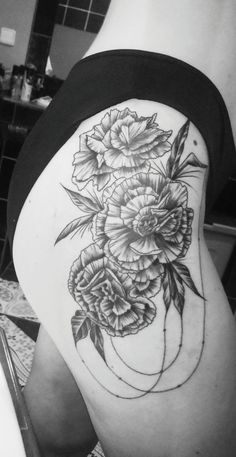 My carnations ❣