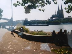 view from the Rhinepark in Deutz to Cologne cathedral