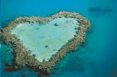 Take a romantic scenic flight over the iconic Heart Reef in The Whitsundays.