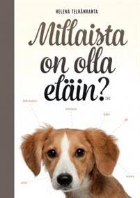 Ullan Luetut kirjat: Eläinten ja mörköjen seurassa ja Pika-arvonta