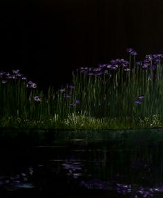 irises at night acrylics and oils on canvas