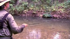 Go Fly Fishing for Carp in Sulpher, Oklahoma. This was a fun video to shoot even though two of the producers ended up getting poison ivy. Carp Fishing Videos, Fly Fishing For Carp, Happy Fishing, Fly Fishing Tips, Fishing Life, Carp Flies, Fly Tying, Camping, Cats