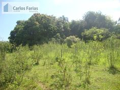 Fazenda para Venda - RA XVI Lago Sul / DF no bairro DF-100 NÚCLEO RURAL TABATINGA REGIÃO PLANALTINA