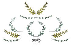 Hand-Drawn Branches & Leaves Vector