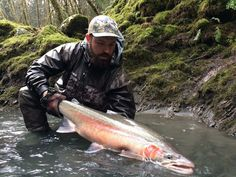 After we caught this monster steelhead some of the locals said that was a once in a lifetime fish. I guess we were just having a lucky day...