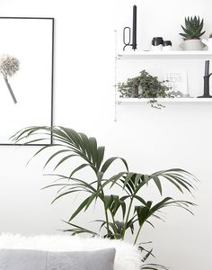 I love the black and white combination with the greenery touch