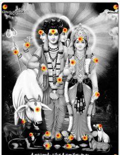 More Ganesh Indian Goddess, Durga Goddess, Shri Hanuman, Krishna Radha, Lakshmi Images, Krishna Images, Krishna Statue, Lord Balaji, Ganesha Pictures