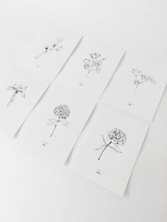 Set of 6 cards with drawings of peony, magnolia branch, gypsophila, viburnum, cherry blossom and iris. The flowers are hand drawn by Inkylines. Wedding Card Design, Wedding Invitation Design, Wedding Stationary, Wedding Cards, Type Illustration, Floral Illustrations, Botanical Illustration, Name Card Design, Minimalist Wedding Invitations