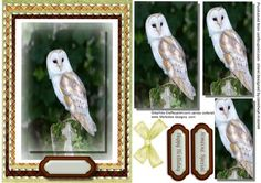Beautiful Pyramid Barn Owl  on Craftsuprint - Add To Basket!