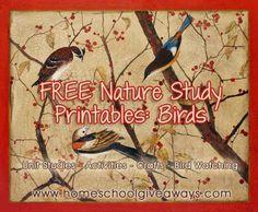 Big list of FREE Bird Themed Printables and Unit Studies!
