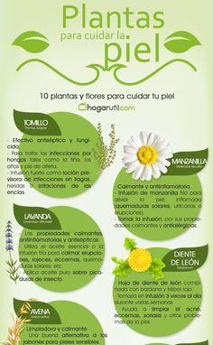 1o plantas y flores para cuidar la piel de forma natural. #salud #piel #infografia