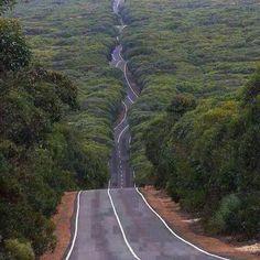 الطريق بين ولاية ام البواقي وولاية خنشلة -الجزائر algeria #algerie