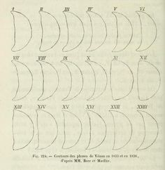 Fig. 224. Phase of Venus in 1833 and 1836. Astronomie populaire. 1854.
