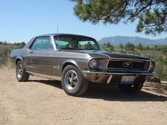 1968 mustang | 1968 Ford Mustang - Pictures - 1968 Ford Mustang Base picture ...
