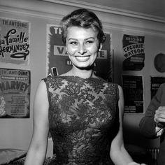 Sophia Loren, beautiful