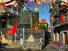 Primavera por todos os recunchos... Neste caso en Pontevedra na praza onde se atopa a Casa do Barón (Parador Turismo).