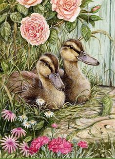 baby ducks and flowers