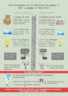 Infographie : Comment sont fabriquées les feuilles de papier A4 que l'on utilise au quotidien? Tout savoir sur les chiffres de la fabrication du papier. #infographie #foret #bois #pin