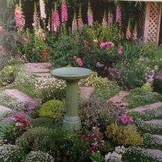 Pretty Garden!!!