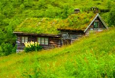 hobbit house, green roof, sod roof, sod house, old world, Nordic countries, Iceland, Norway / The Green Life <3