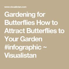 Gardening for Butterflies How to Attract Butterflies to Your Garden #infographic ~ Visualistan