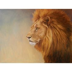 Werner Rentsch Lion King Oil Painting ($4,000) ❤ liked on Polyvore featuring home, home decor, wall art, animals, backgrounds, cats, pictures, lion wall art, kitten picture and cat wall art